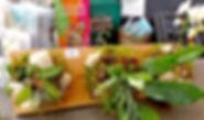 Mounted houseplants.jpg
