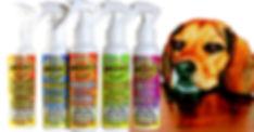 Flavored-Omega-3-Sprays-web_edited.jpg