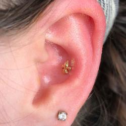 conch ear piercing, fleur de lis