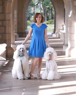 Debra J Stein boynton beach interior designer with her white standard poodles in Palm Beach