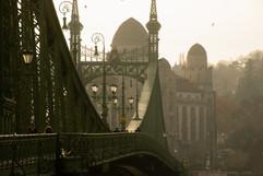 Liberty Bridge - Budapest