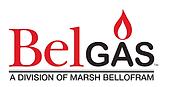 belgas logo.png