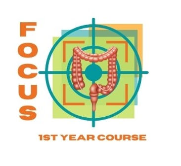 FOCUS First Year Course. Small Borders.jpg