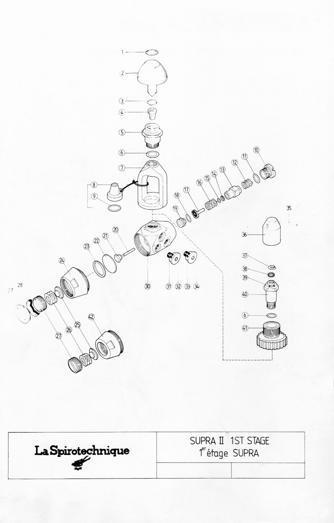 SUPRA2--.jpg