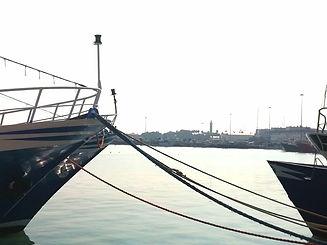 the Port.jpg