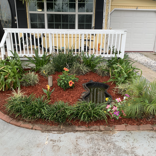 Landscaping in panama city