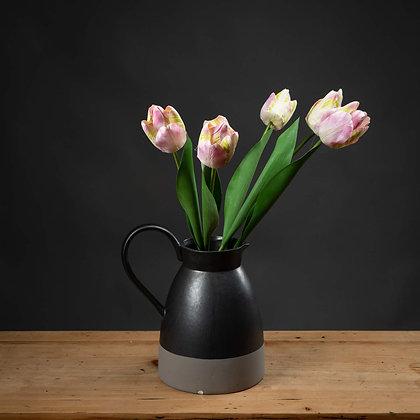Pink & Green Tulip