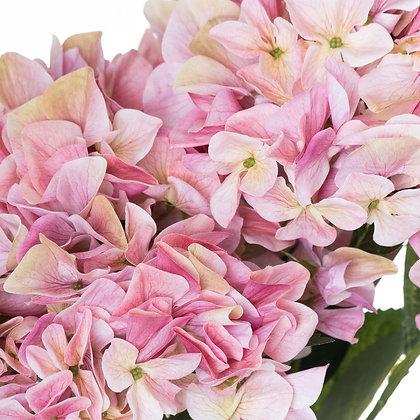 Shabby Pink Hydrangea Bouquet