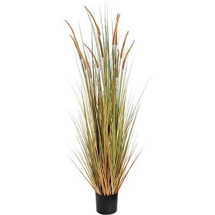 Field Grass Pot 60 Inch