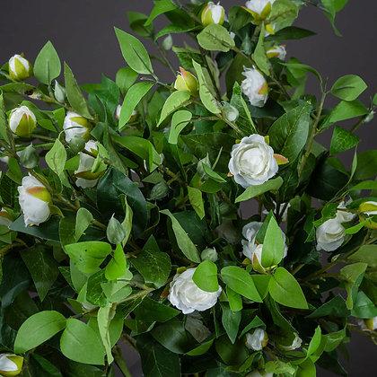 Cream Gardenia Stem