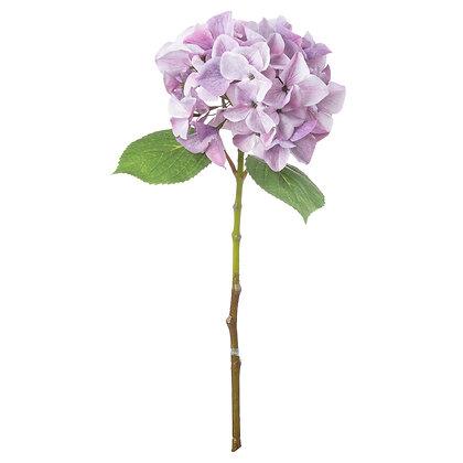 Shabby Purple Single Hydrangea