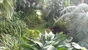 Palmenhaus in Lednice, Pflanzenpracht, Palmen, üppige Bepflanzung