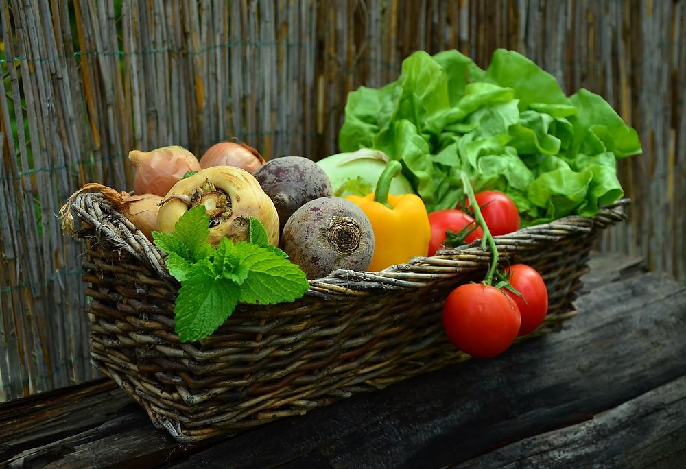 reiche Ernte im Herbst, Herbsternte, Herbstkorb, Korb