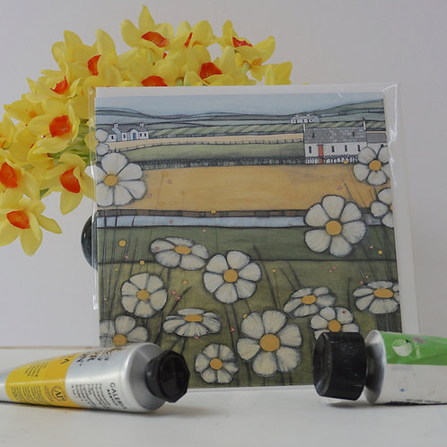 """Art Card of """"Galloway Daisies"""""""