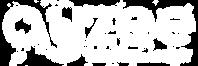 ayzee logo white.png