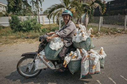 Funny Transport Motobikes Vietnam