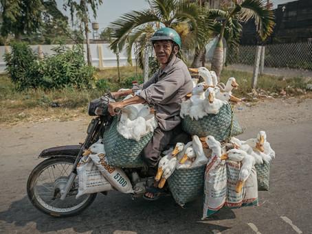 Vietnam - Riders on the storm