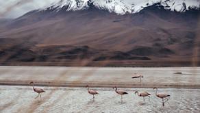 Südamerika - Entlang der Anden