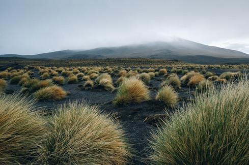Berglandschaft Bolivien Reisefotografie