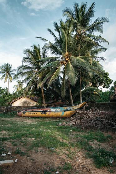 Fischerei Sri Lanka