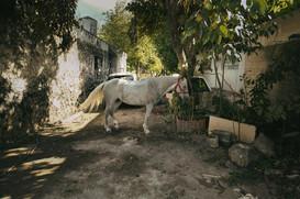 Landwirtschaft Mexiko