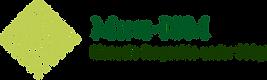 Mini-ISM Logo