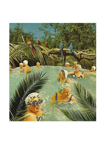 Baignade tropicale