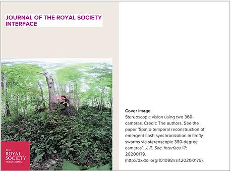 royal_soc_interface.png