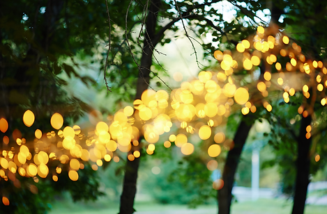 Outdoor Event Lights.png