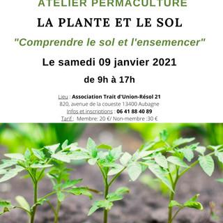 Atelier la plante et la sol