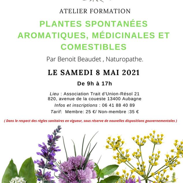_Atelier Formation Plantes spontanées ar