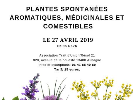 """Atelier """"Plantes spontanées aromatiques, médicinales et comestibles"""" le 27 avril 2019"""