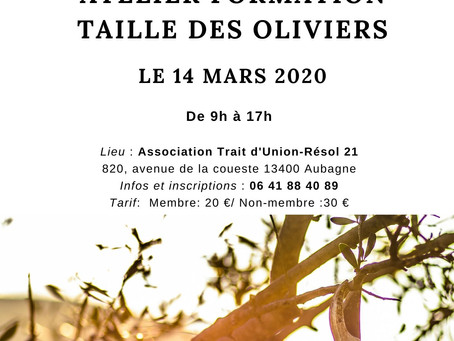 """Atelier Formation """"Taille des oliviers"""" le 14 mars 2020"""