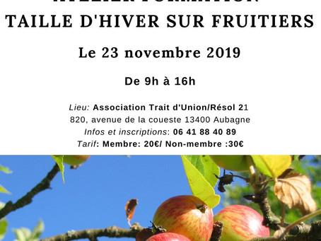 TAILLE D'HIVER SUR FRUITIERS