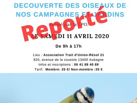 """Atelier """"Découverte des oiseaux de nos jardins et campagnes"""" par la LPO"""