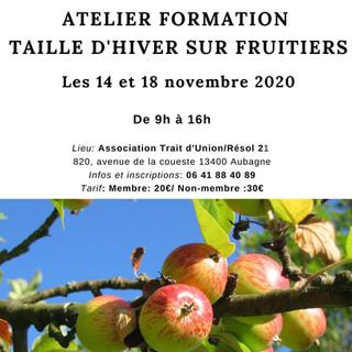 Atelier Taille d'hiver sur fruitiers