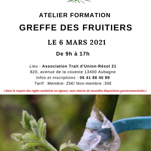 Formation Greffe des fruitiers