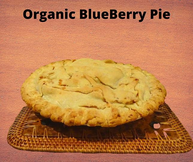 Organic Blue Berry Pie