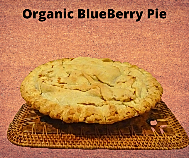 Organic Blue Berry Pie