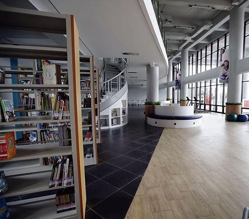library crop.jpg