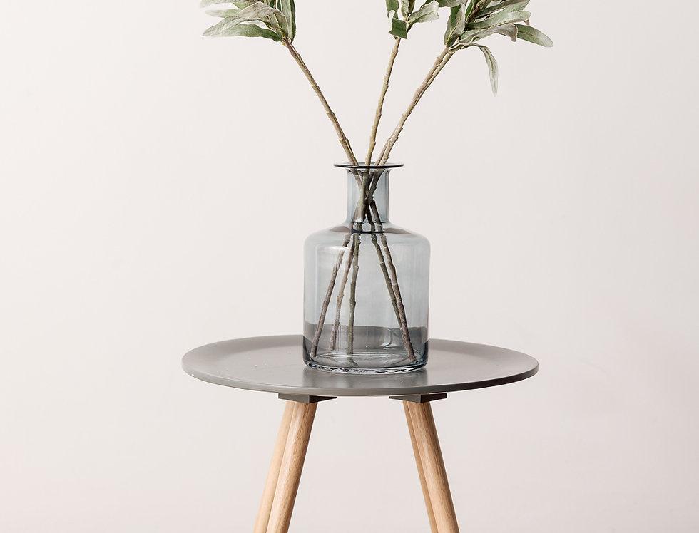 Protea prepens, green