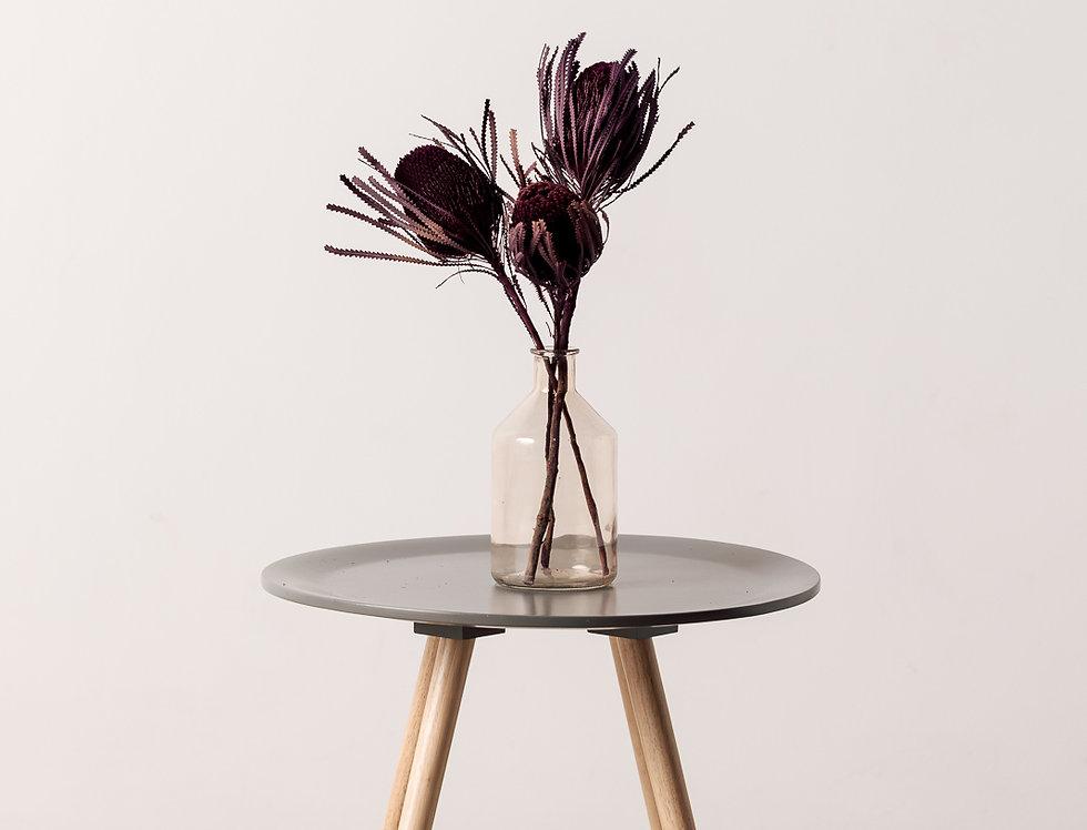 Bangsia, violett