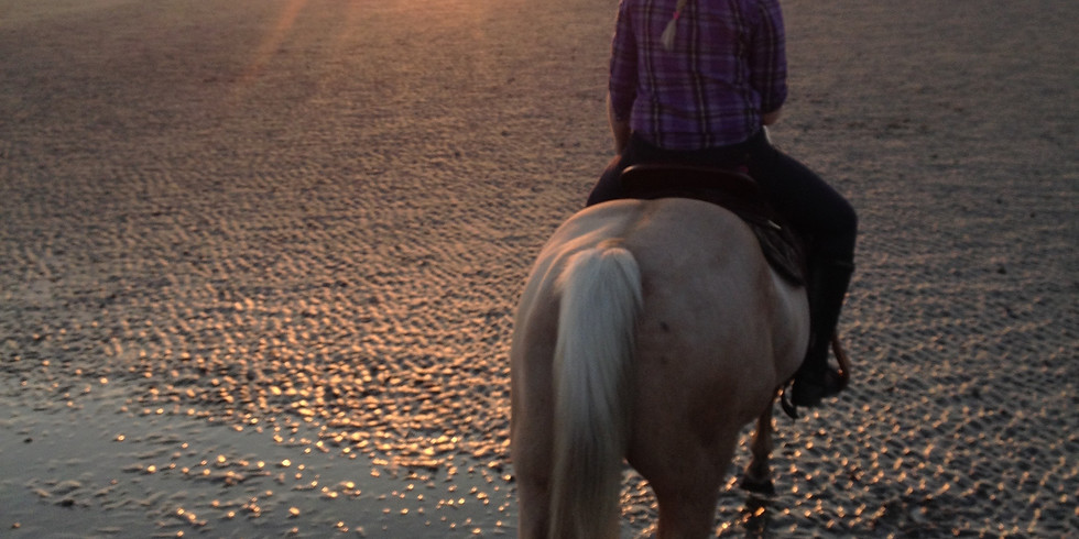 2 Day Horse and Rider Confidence Course