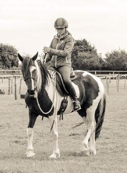 Natural Horsemanship, Connection