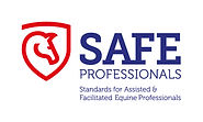 Safe Professionals