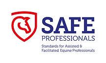 Safe Professionals