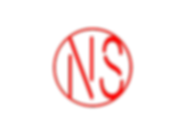 NS logo 2.png