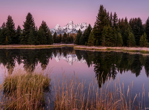 Dawn at Schwabacher's Landing