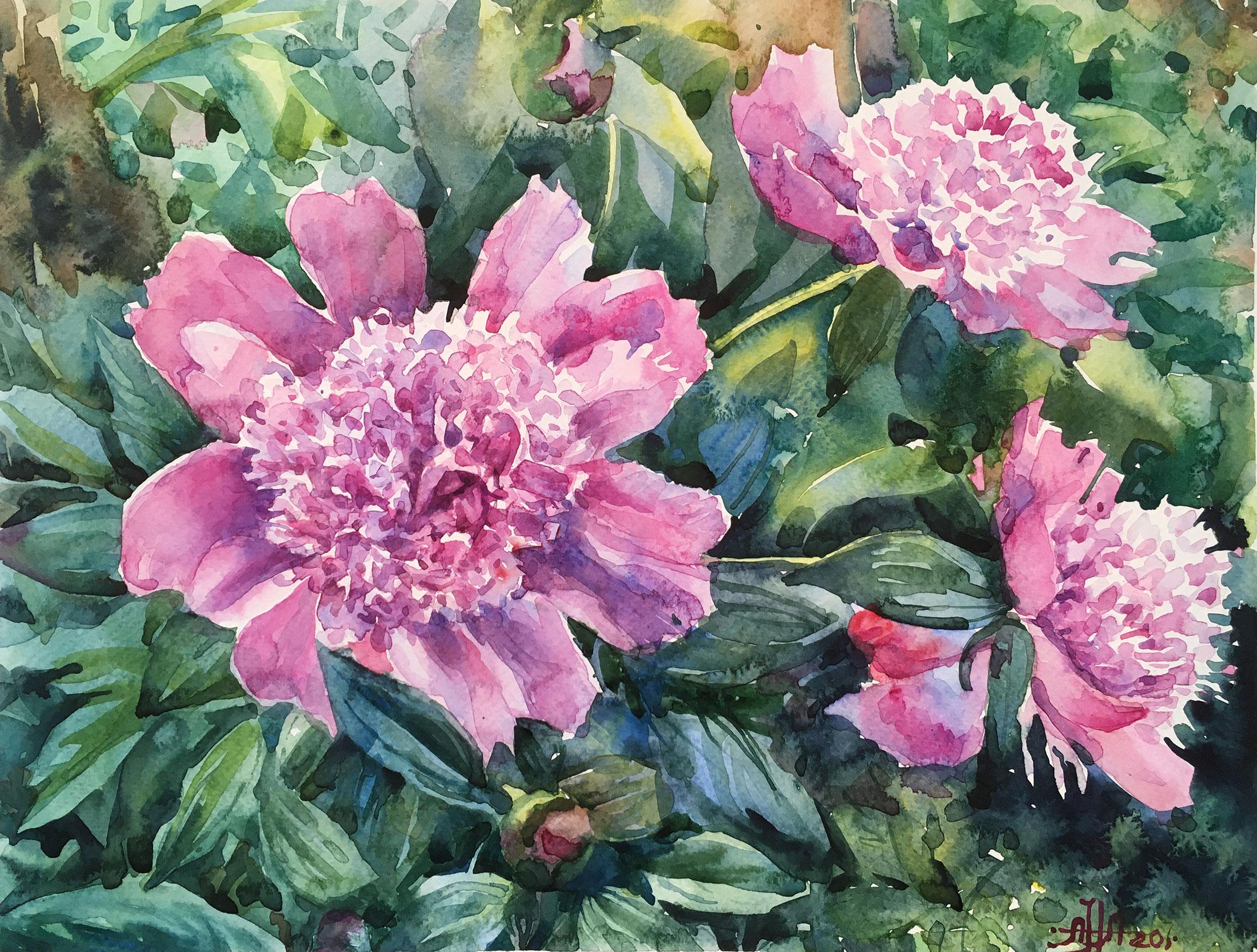 Розовые в саду