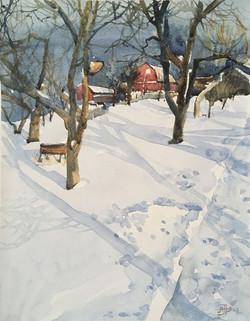 Winter in the village -2